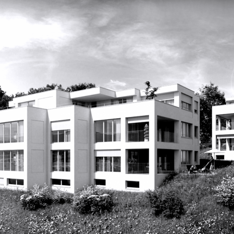 Liestal, Eglispark